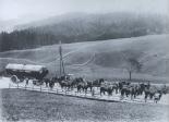 Dampfkessel-Transport mit Pferden
