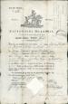 Reisepass für Chirurgus Würzer